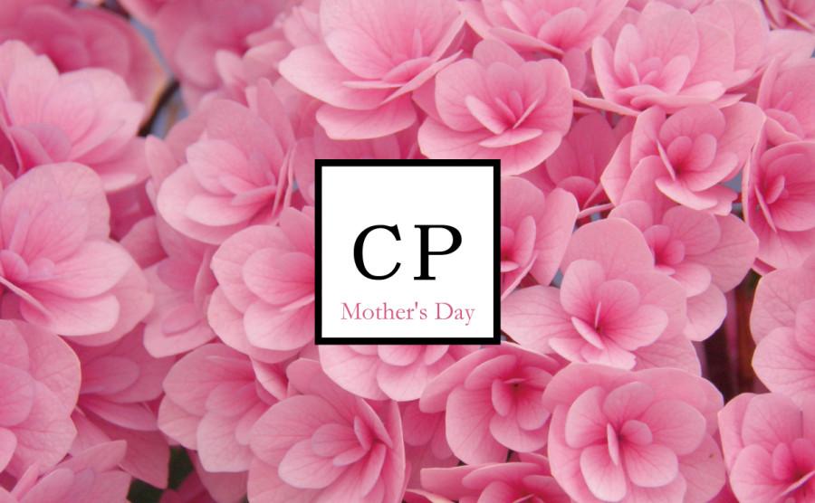 紫陽花フェア & 母の日特別コースのお知らせ