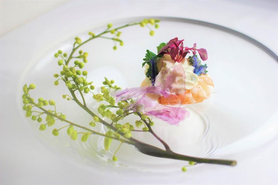 Crevette et Coquille Saint-Jacques Espuma de chou-fleur